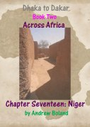 cover niger copy