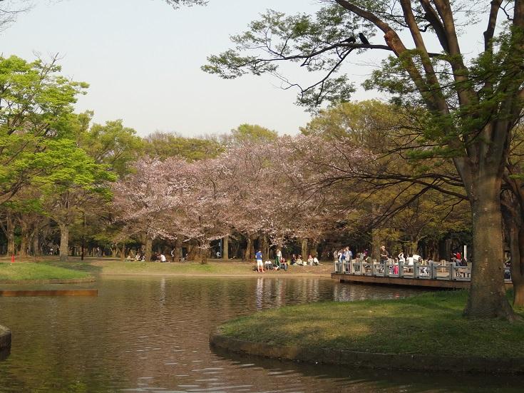Yoyogi Park - big, beautiful place to hang!