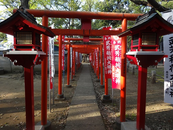 Beautiful path under red gates.