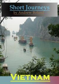 vietnam cover copy med