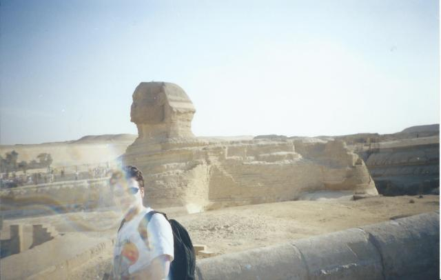 Bewitched by the SPhinx