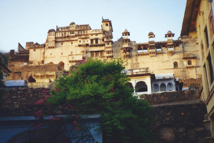 Buildings around the lake in Udaipur.