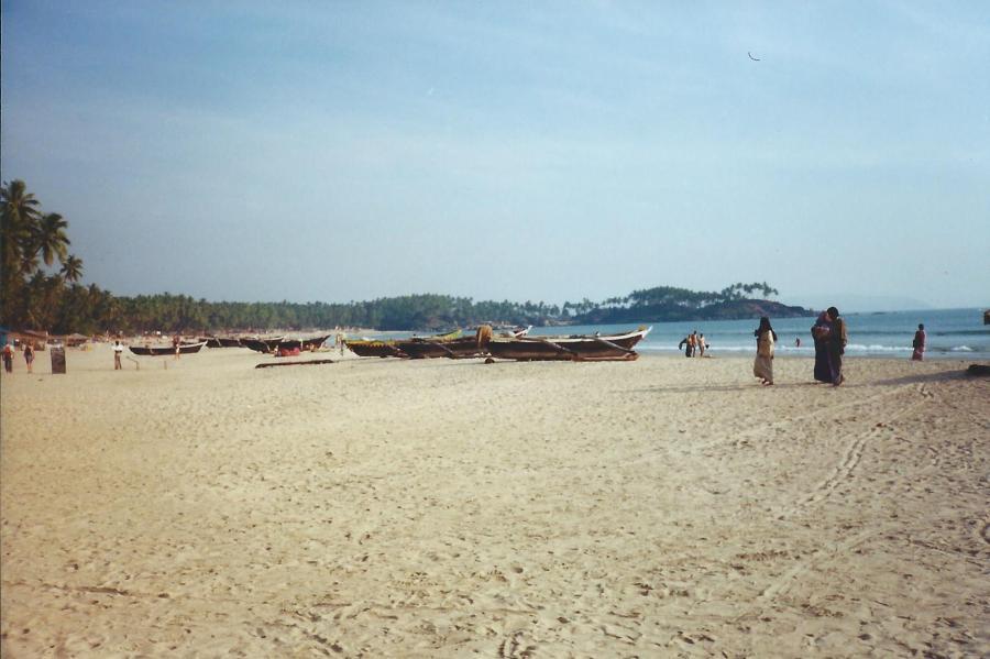Goan beaches. They're ok.