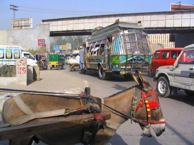 Bustling Peshawar.
