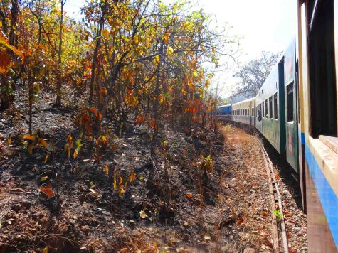 my train 2d