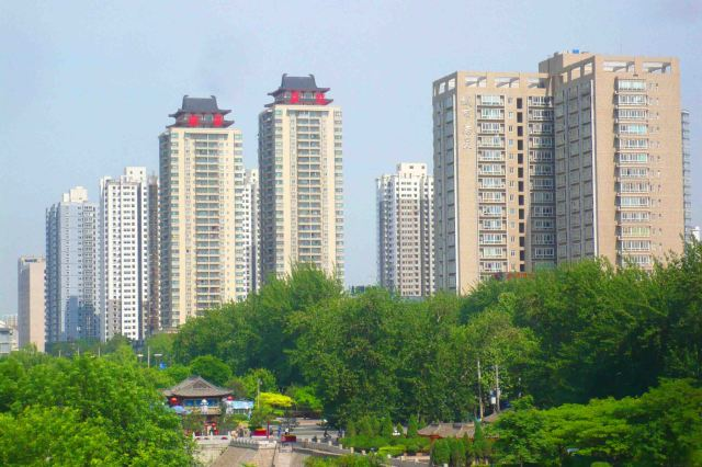Sky scraping apartment blocks above the greenery.