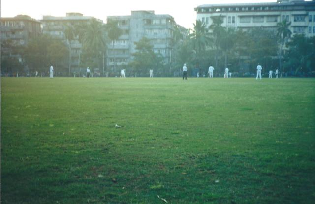 cricket on the fields of Mumbai