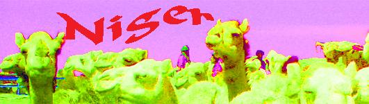 banner niger
