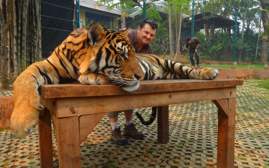 Yep. Me and a tiger. So there! :)