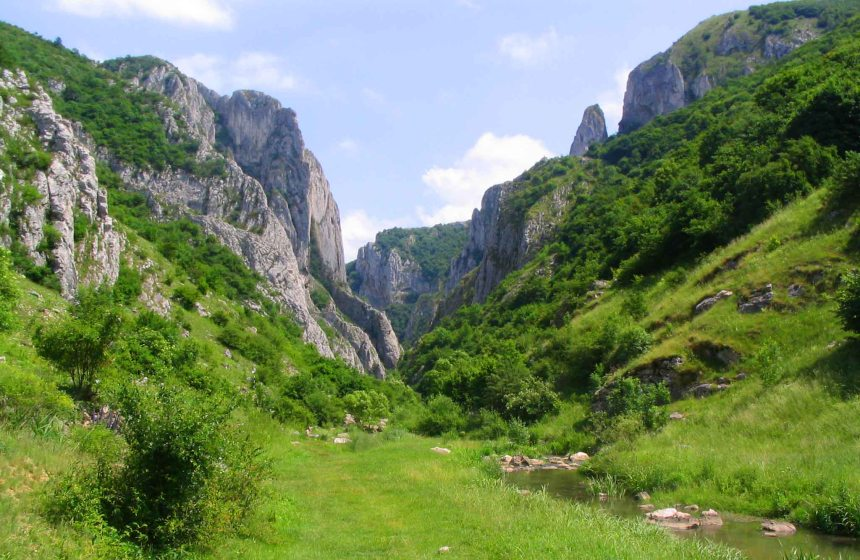 Beautiful Turda Gorge.