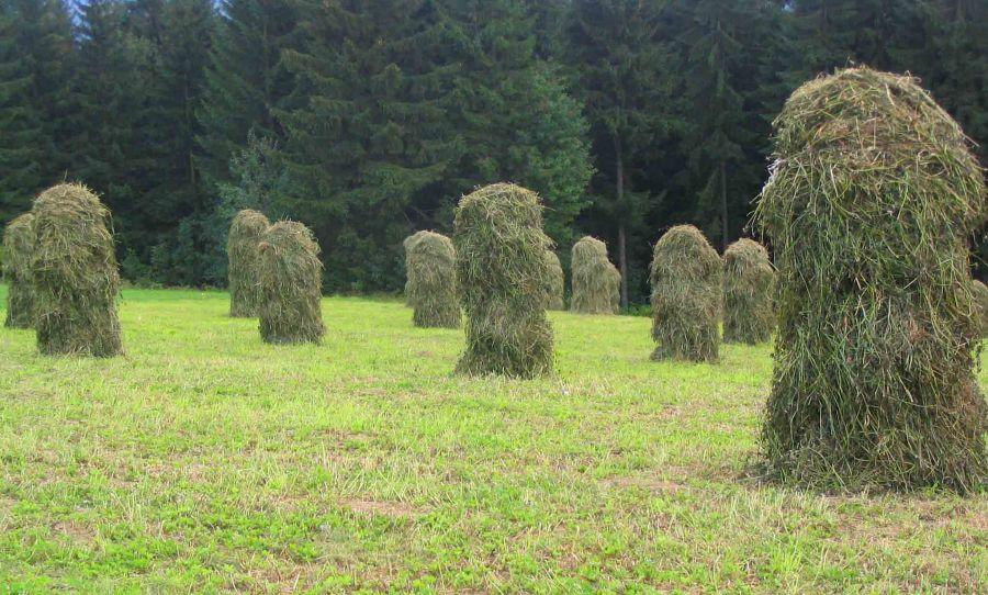zakopane hay stacks