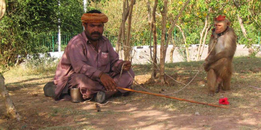 pakistan man with monkey