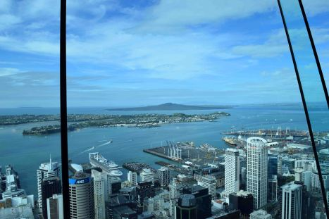 Auckland from the tower.