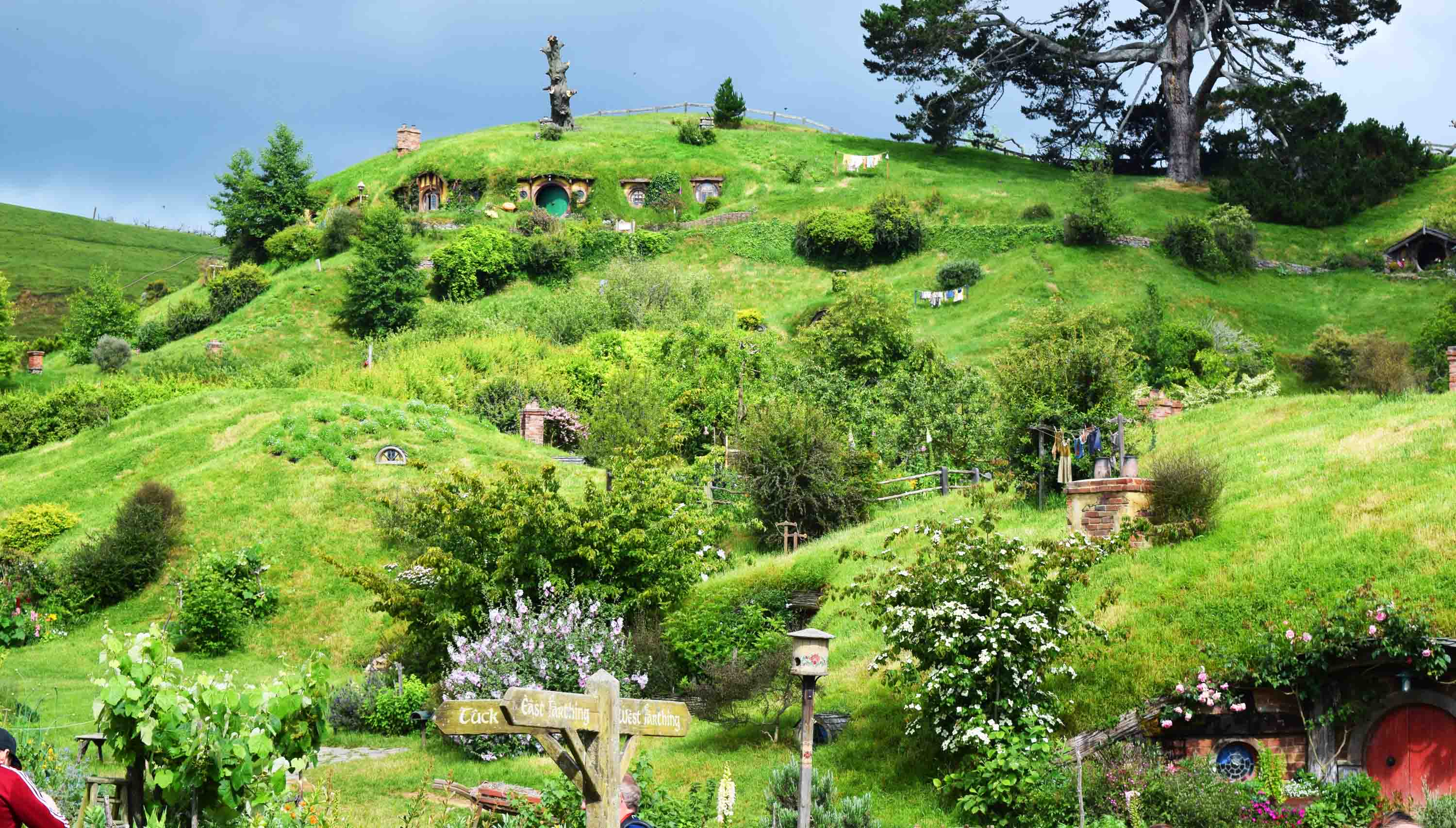 getting your hobbit on at hobbiton new zealand andy 39 s world journeys. Black Bedroom Furniture Sets. Home Design Ideas