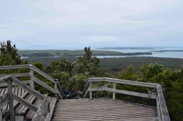 At the top of Rangitoto Island.