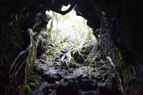 Inside the lava cave.