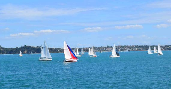 Sail boats from the ferry on the return trip to Auckland.