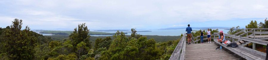Panoarama view from the top of Rangitoto.