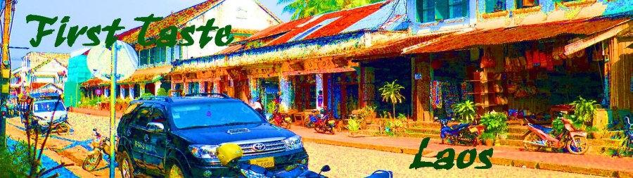 banner first taste laos copy