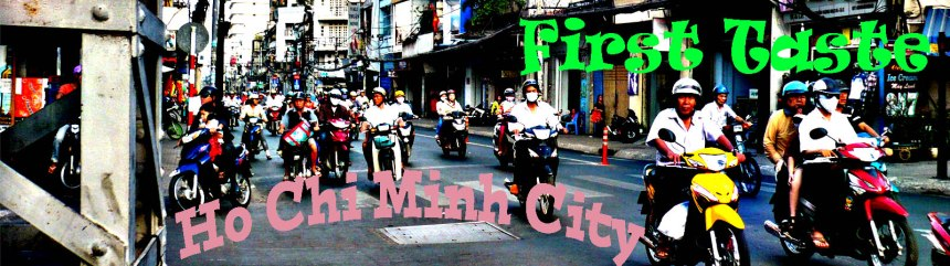 banner first taste vietnam copy