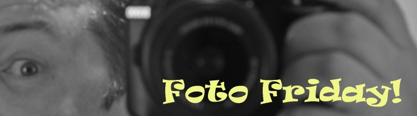 banner foto friday copy