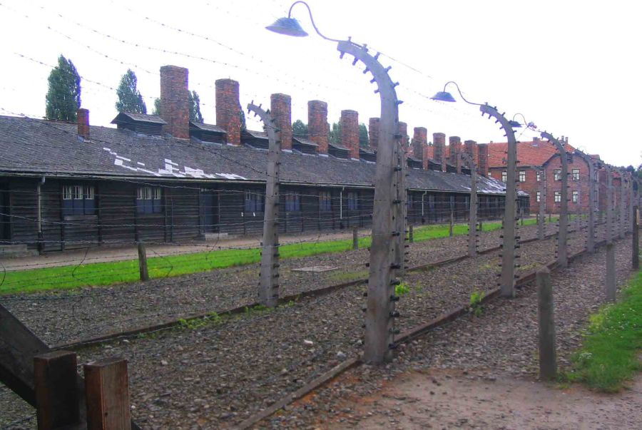 Fences of Auszhwitz