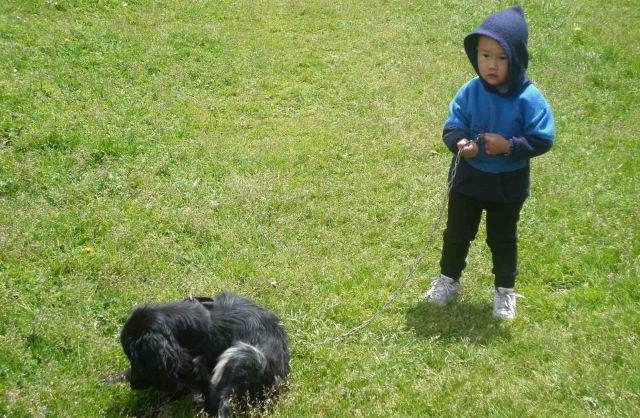 boy and dog altyn arashan