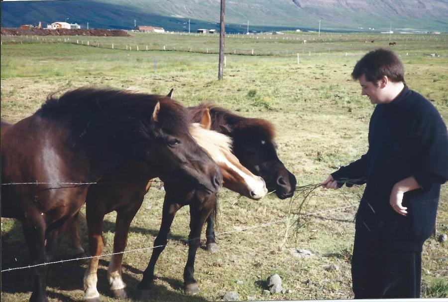 Feeding the horses!
