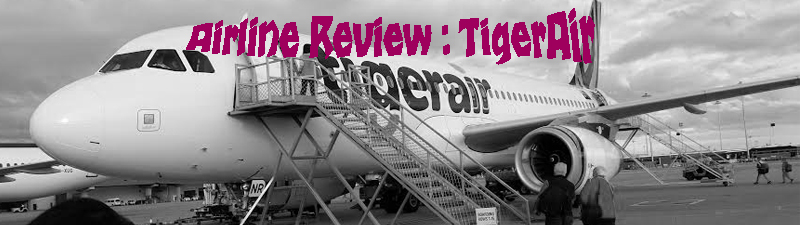 banner tiger air copy
