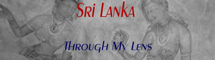 banner-sri-lanka-through-my-lens-copy
