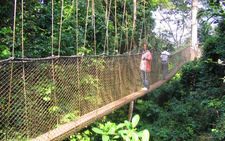jungle kakum