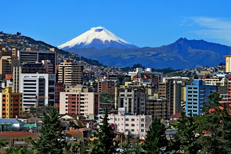 Quito (redmangrove.com)