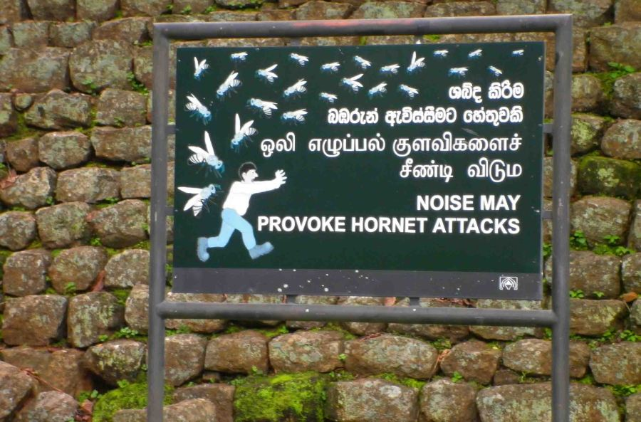 Interesting sign at Sigiriya.