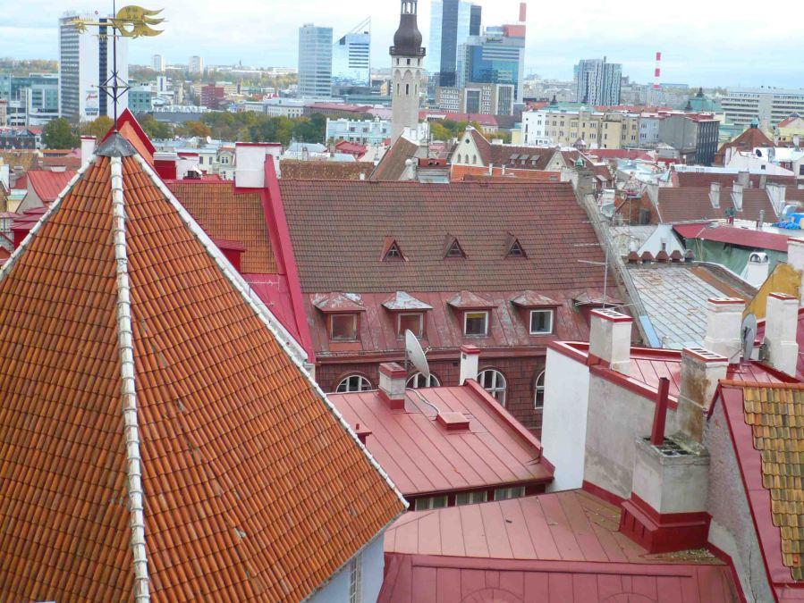 Tallinn rooftops.
