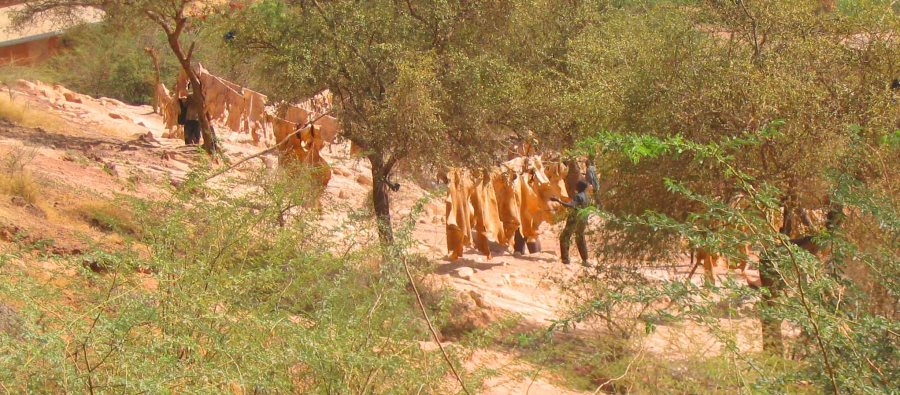 tans-drying-near-niger-river