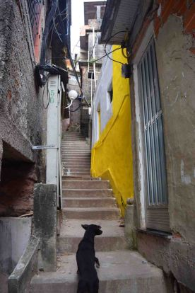 Steps in the Santa Marta Favela