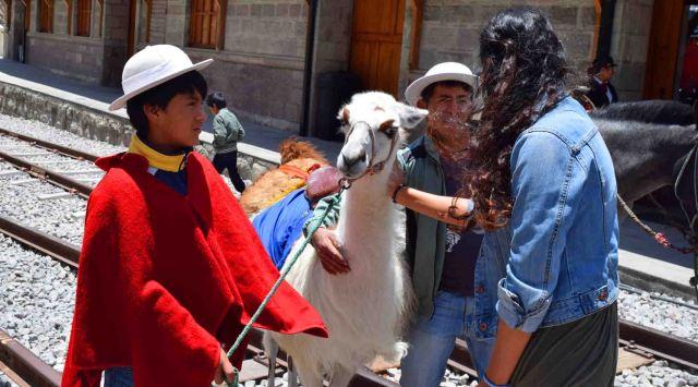 Fun and llamas at Sibambe